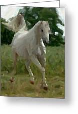 Arabian Horse Abstract Greeting Card