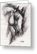 Arabian Horse Drawing 12 Greeting Card