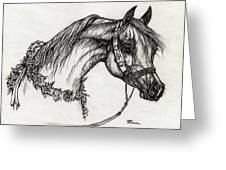 Arabian Horse Drawing 22 Greeting Card