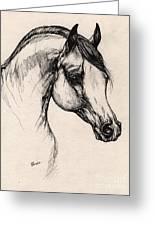 Arabian Horse Drawing 24 Greeting Card
