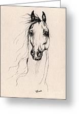 Arabian Horse Drawing 25 Greeting Card