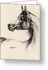 Arabian Horse Drawing 26 Greeting Card