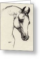 Arabian Horse Drawing 32 Greeting Card