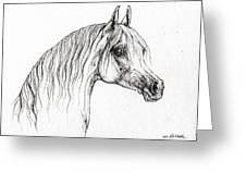 Arabian Horse Drawing 47 Greeting Card