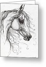 Arabian Horse Drawing 48 Greeting Card