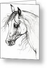 Arabian Horse Drawing 49 Greeting Card
