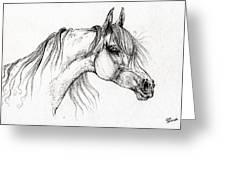 Arabian Horse Drawing 51 Greeting Card