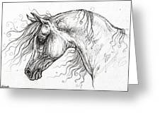 Arabian Horse Drawing 53 Greeting Card