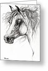 Arabian Horse Drawing 54 Greeting Card
