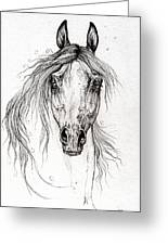 Arabian Horse Drawing 55 Greeting Card