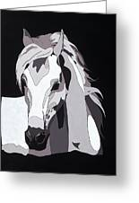 Arabian Horse With Hidden Picture Greeting Card