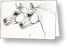 Arabian Horses 2014 02 25 Greeting Card
