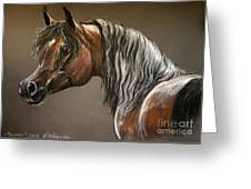 Arabian Mare Greeting Card