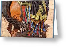 Arabian Native Show Greeting Card