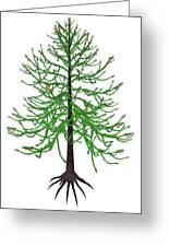 Araucaria Prehistoric Tree Greeting Card