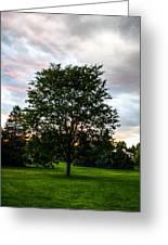Arbor Greeting Card
