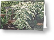 Arbor Passage Greeting Card