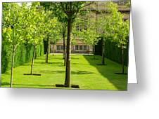 Arboretum  Greeting Card