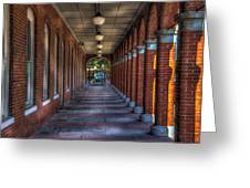 Arches And Columns Greeting Card