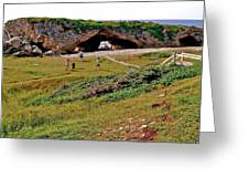 Arches On West Coast-nl Greeting Card