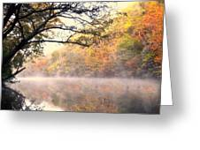 Arching Tree On The Current River Greeting Card
