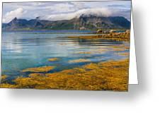 Arctic Circle Paradise Greeting Card
