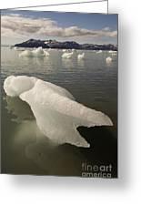 Arctic Ice Floe Greeting Card