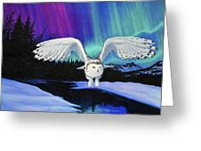 Arctic Owl Greeting Card