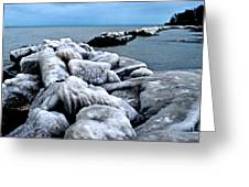 Arctic Waters Greeting Card