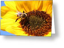 Are You Buzzing? Greeting Card