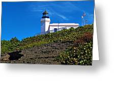 Arecibo Lighthouse 1 Greeting Card