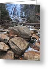 Arethusa Falls Greeting Card by Catherine Reusch Daley