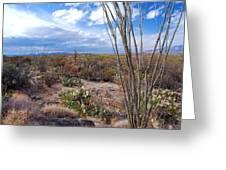 Arizona Afternoon Greeting Card