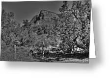 Arizona Bell Rock Valley N11 Greeting Card