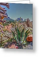 Arizona Bell Rock Valley N7 Greeting Card