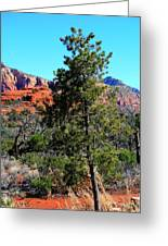 Arizona Bell Rock Valley 5 Greeting Card