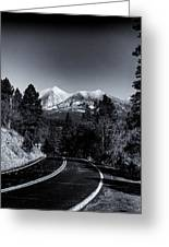 Arizona Country Road In Black And White Greeting Card