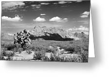 Arizona Desert #1 Greeting Card