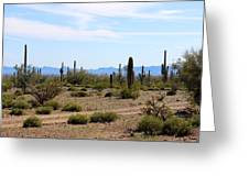 Arizona Desert Ride Greeting Card