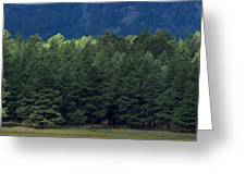 Arizona Forest Greeting Card