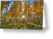 Arizona Gold Greeting Card