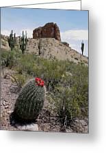 Arizona Icons Greeting Card