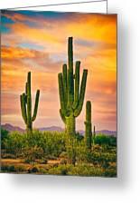 Arizona Life Greeting Card