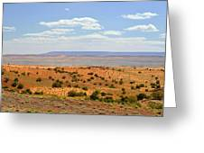 Arizona Near Canyon De Chelly Greeting Card by Christine Till