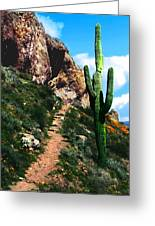 Arizona Saguaro Tonto National Monument Greeting Card