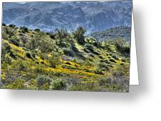 Arizona Spring Greeting Card