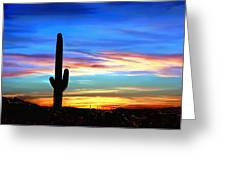 Arizona Sunset Saguaro National Park Greeting Card