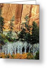 Arizona's Betatkin Aspens Greeting Card