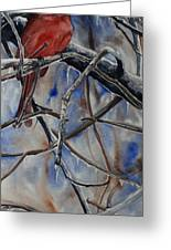 Arkansas Cardinal Greeting Card