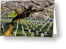 Arlington National Cemetary Greeting Card